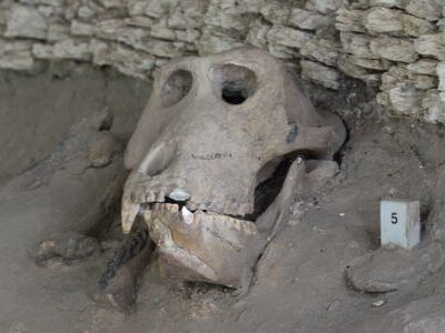 OLORGESAILIE PRE-HISTORIC SITE AND LAKE MAGADI DAY TOUR