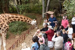 Kenya Conservation Safari