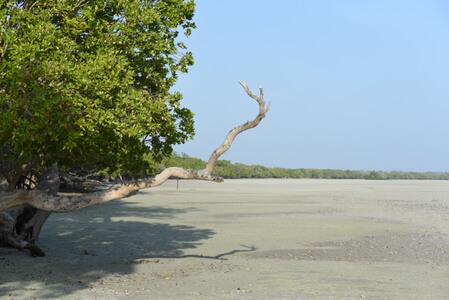 Watamu and Malindi Beach Holidays