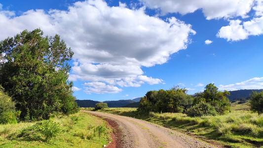 Aberdare National Park