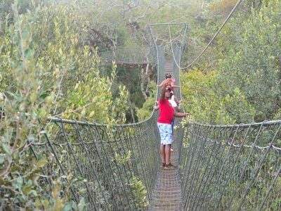 Ngare Ndare Forest Day Tour