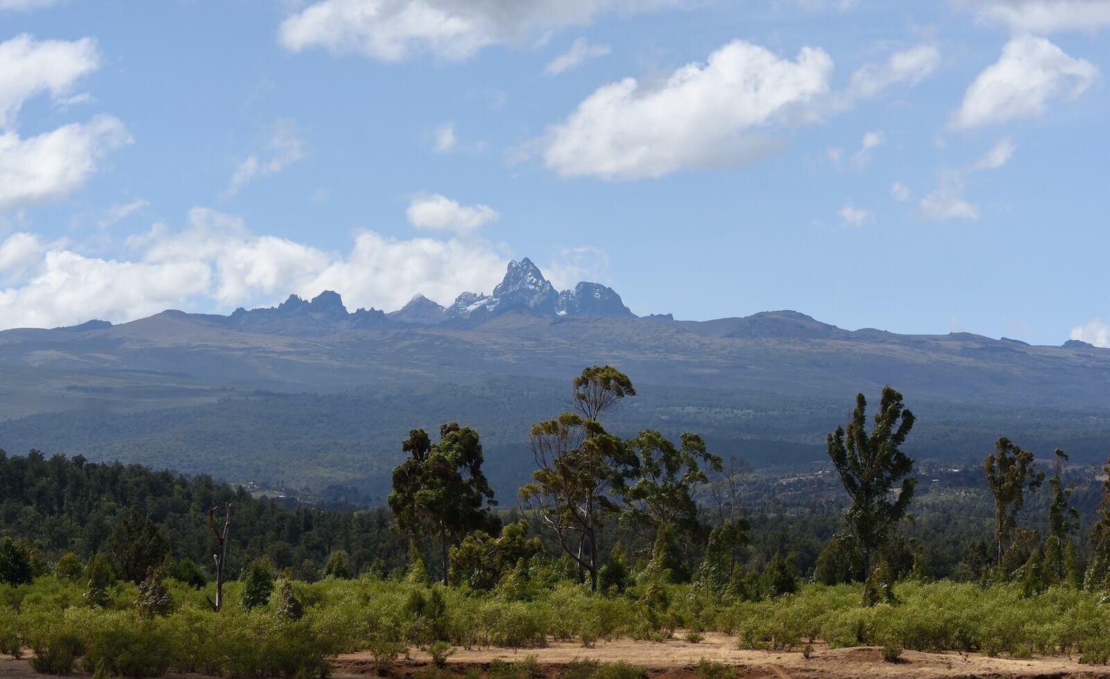 Mt. Kenya National Park Day Tour